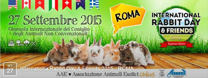 AAE International Rabbit Day