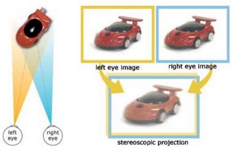 stereoscopico